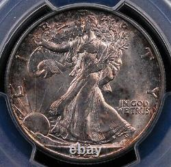 1923 S Walking Liberty Half Pcgs Ms 63 Glassy Silver Luster With Mottled Amber